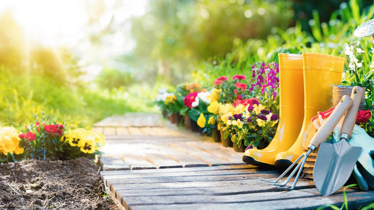 """Convierte Tu Jardín en un Autentico  """" Paraíso Terrenal """""""